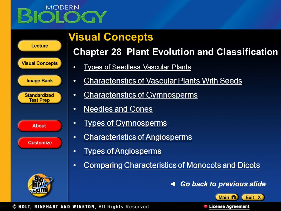 Visual Concepts Chapter 28 Plant Evolution and Classification Types of Seedless Vascular Plants Characteristics of Vascular Plants With Seeds Characteristics of Gymnosperms Needles and Cones Types of Gymnosperms Characteristics of Angiosperms Types of Angiosperms Comparing Characteristics of Monocots and Dicots Go back to previous slide