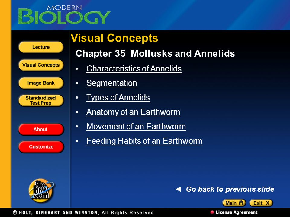 Chapter 35 Mollusks and Annelids Characteristics of Annelids Segmentation Types of Annelids Anatomy of an Earthworm Movement of an Earthworm Feeding Habits of an Earthworm Visual Concepts Go back to previous slide