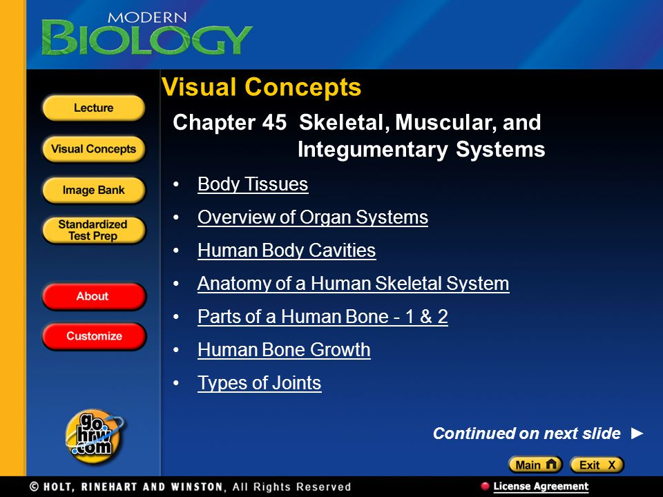 Chapter 45 Skeletal, Muscular, and Integumentary Systems Body Tissues Overview of Organ Systems Human Body Cavities Anatomy of a Human Skeletal System