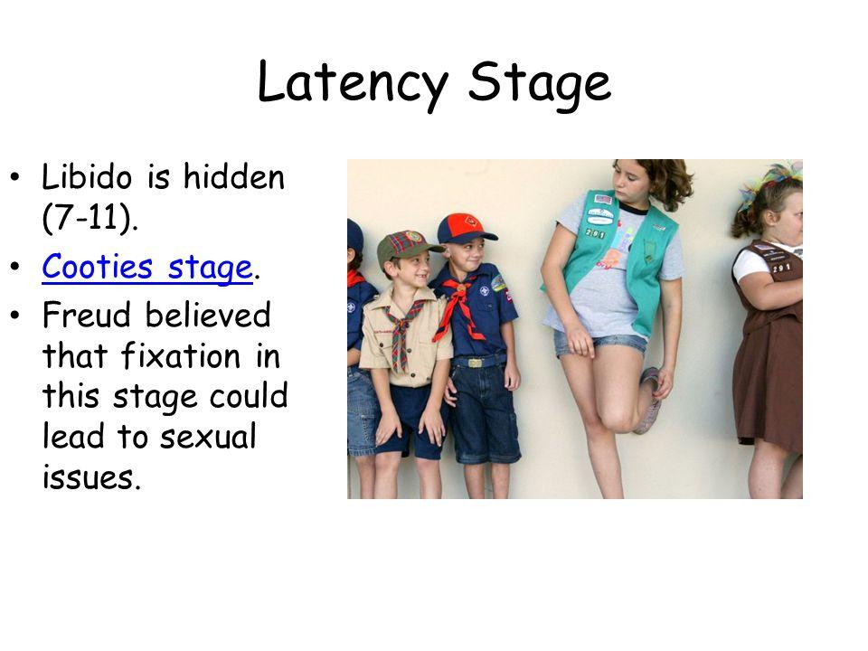 Genital Stage Libido is focused on their genitals (12- death).