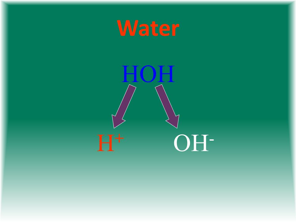 Water HOH H+H+ OH -