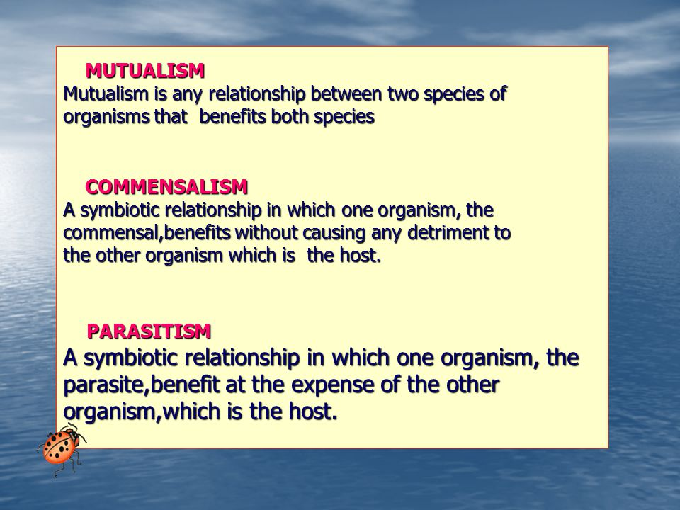 MUTUALISM MUTUALISM Mutualism is any relationship between two species of organisms that benefits both species COMMENSALISM COMMENSALISM A symbiotic relationship in which one organism, the commensal,benefits without causing any detriment to the other organism which is the host.