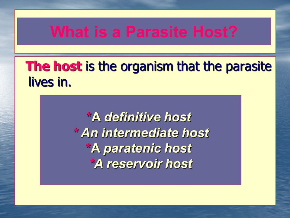 The host is the organism that the parasite lives in.