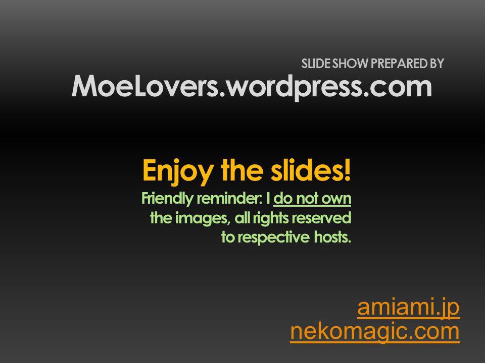 amiami.jp MoeLovers.wordpress.com SLIDE SHOW PREPARED BY nekomagic.com Enjoy the slides.