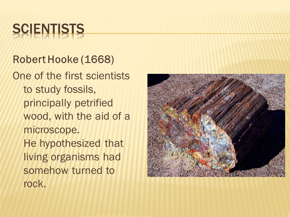The Tertiary lasted 63 million years.