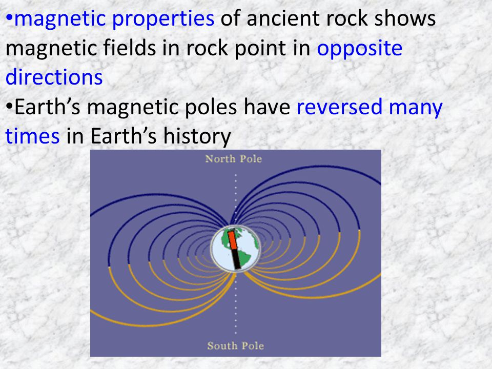 magnetic properties of ancient rock shows magnetic fields in rock point in opposite directions Earths magnetic poles have reversed many times in Earths history