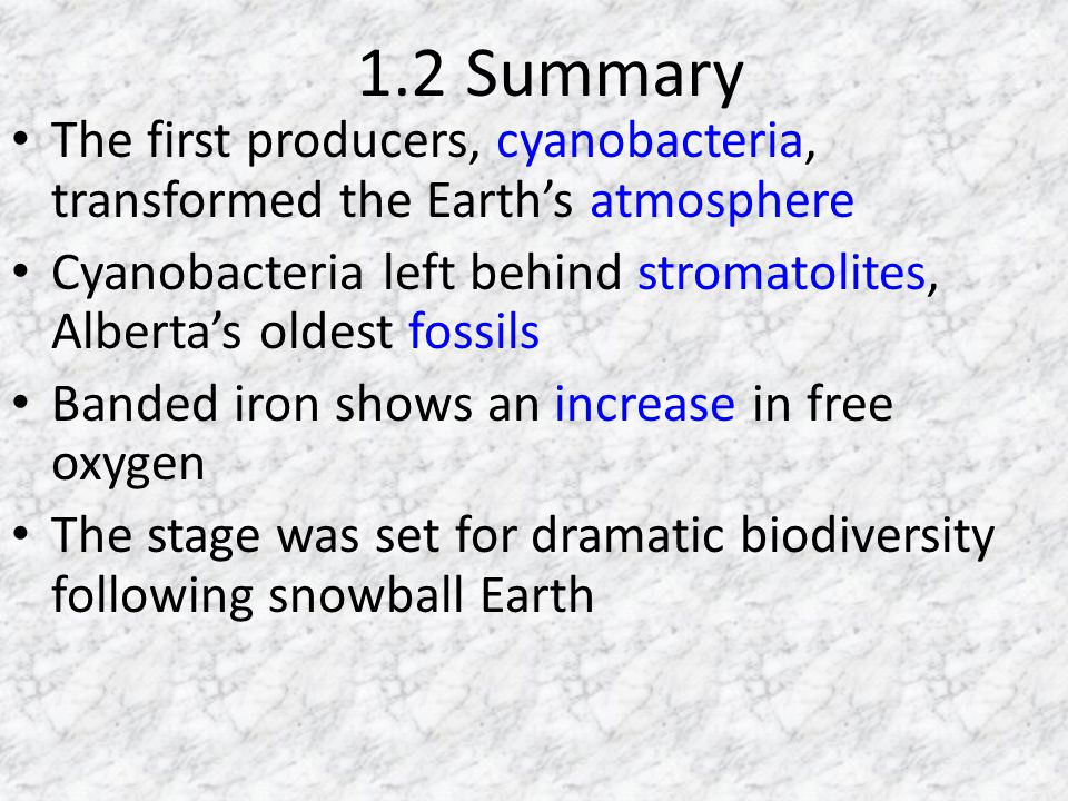 1.2 Summary The first producers, cyanobacteria, transformed the Earths atmosphere Cyanobacteria left behind stromatolites, Albertas oldest fossils Banded iron shows an increase in free oxygen The stage was set for dramatic biodiversity following snowball Earth