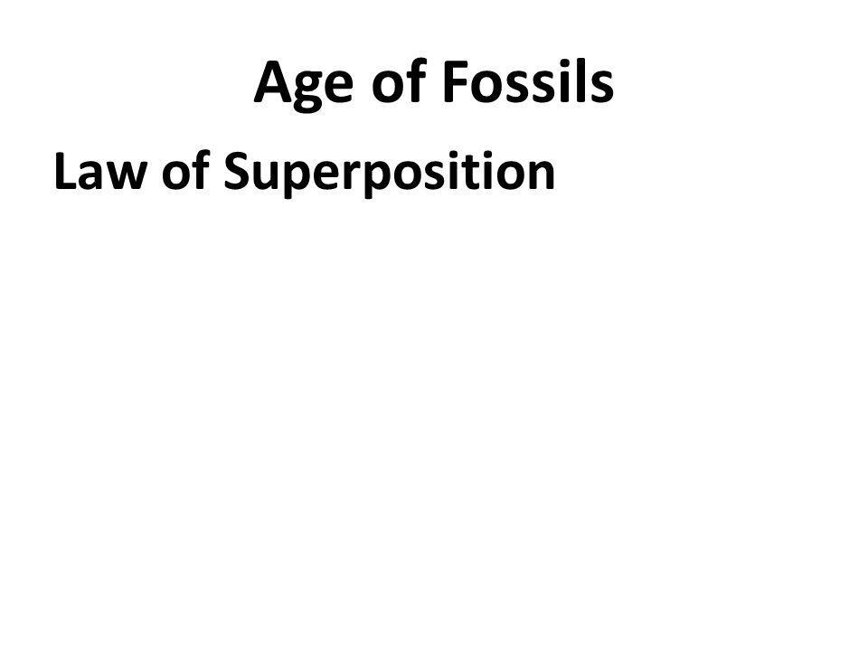 Age of Fossils Law of Superposition