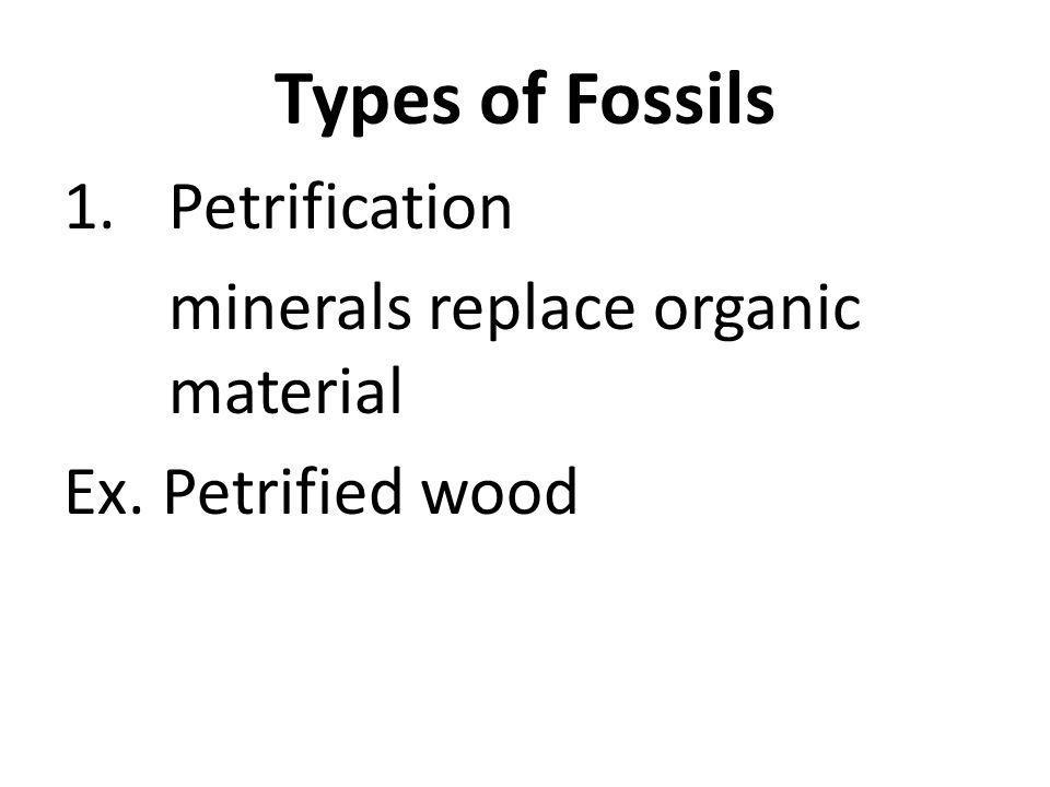 Types of Fossils 1.Petrification minerals replace organic material Ex. Petrified wood