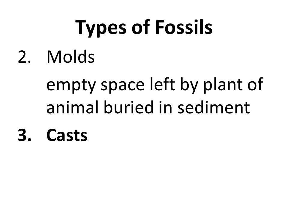 Types of Fossils 2.Molds empty space left by plant of animal buried in sediment 3.Casts
