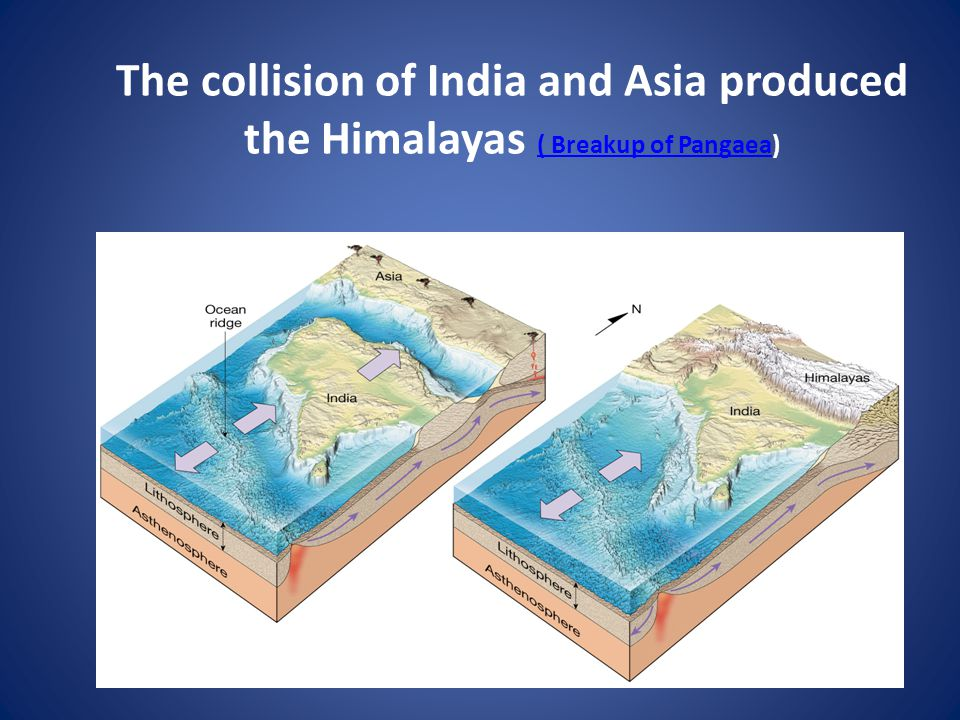 The collision of India and Asia produced the Himalayas ( Breakup of Pangaea) ( Breakup of Pangaea