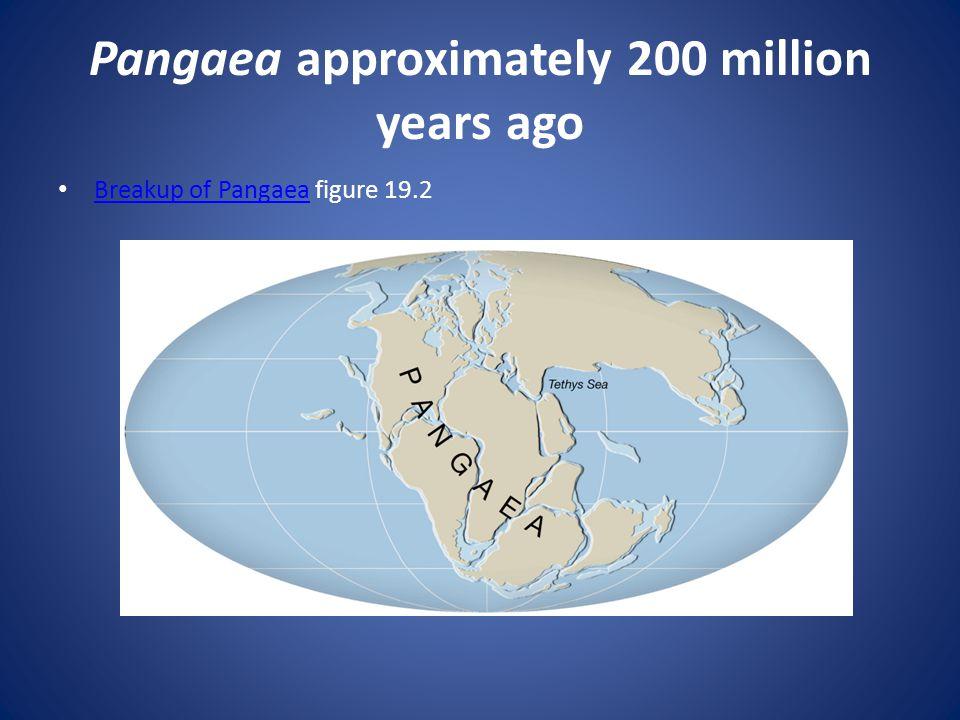 Pangaea approximately 200 million years ago Breakup of Pangaea figure 19.2 Breakup of Pangaea