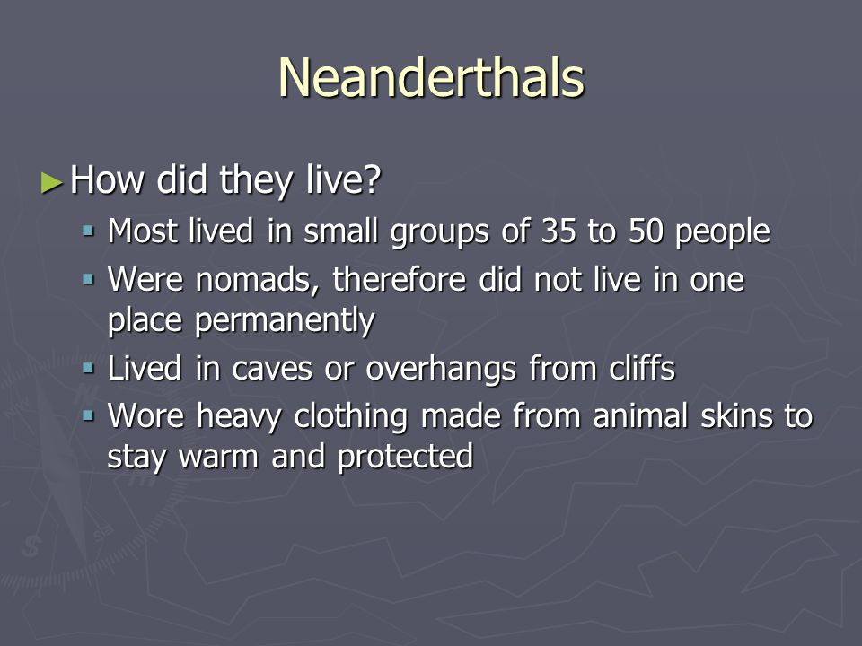 Neanderthals How did they live? How did they live? Most lived in small groups of 35 to 50 people Most lived in small groups of 35 to 50 people Were no