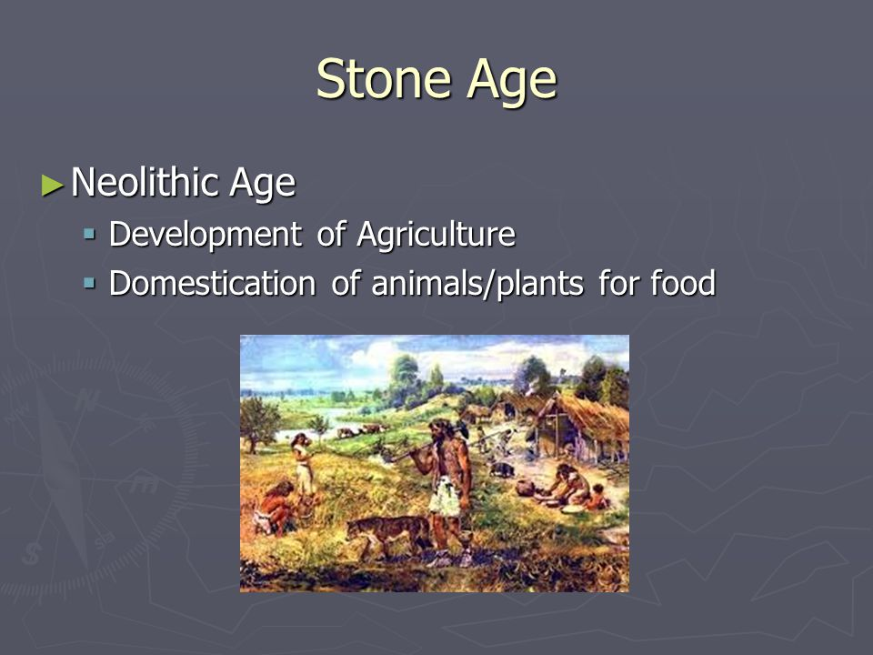 Stone Age Neolithic Age Neolithic Age Development of Agriculture Development of Agriculture Domestication of animals/plants for food Domestication of