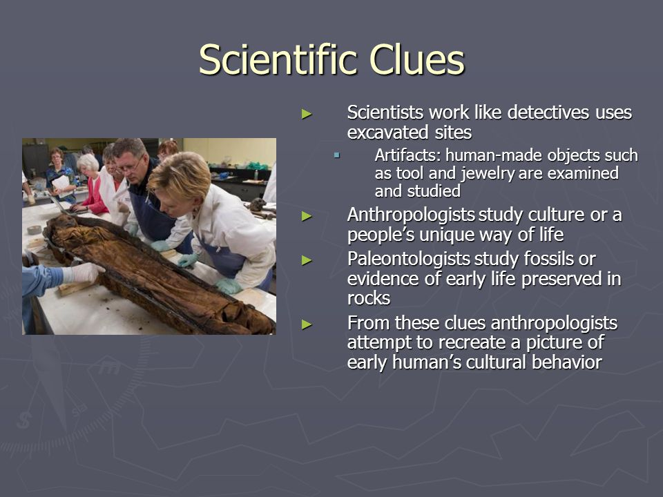 Scientific Clues Scientists work like detectives uses excavated sites Artifacts: human-made objects such as tool and jewelry are examined and studied