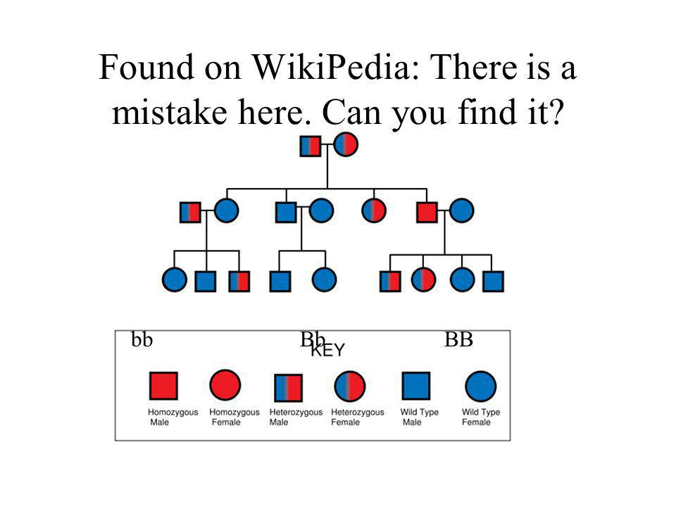 Found on WikiPedia: There is a mistake here. Can you find it? bb Bb BB