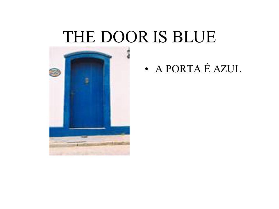 THE DOOR IS BLUE A PORTA É AZUL