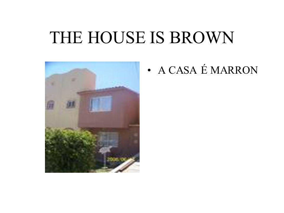 THE HOUSE IS BROWN A CASA É MARRON