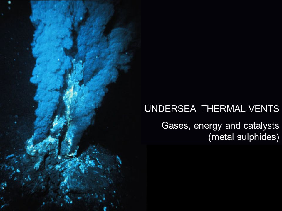 UNDERSEA THERMAL VENTS Gases, energy and catalysts (metal sulphides)
