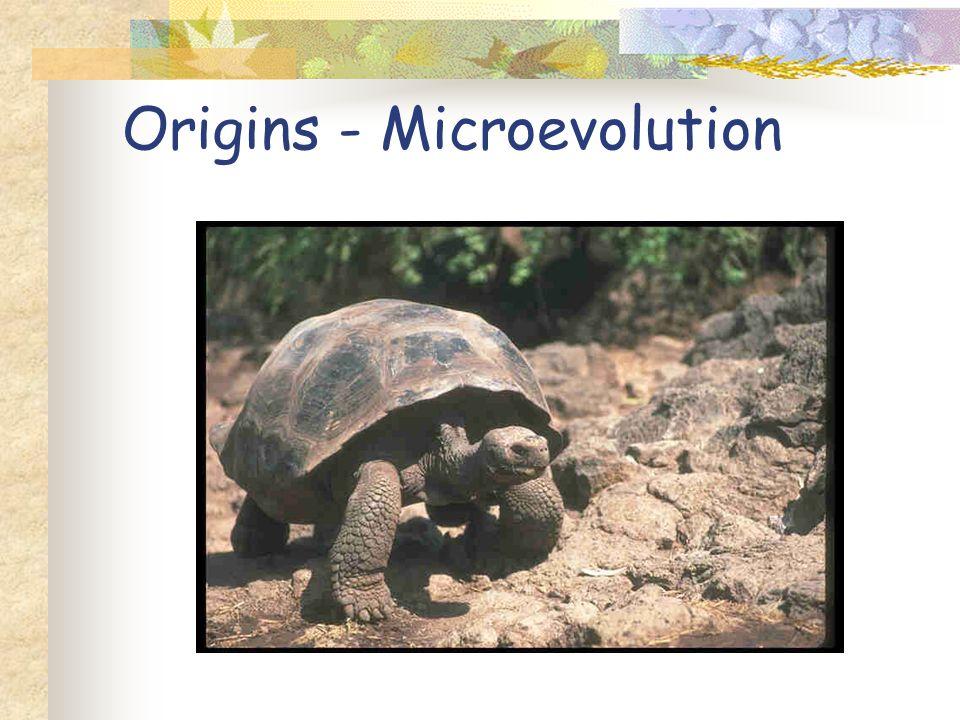 Origins –Spontaneous Generation and Abiogenesis