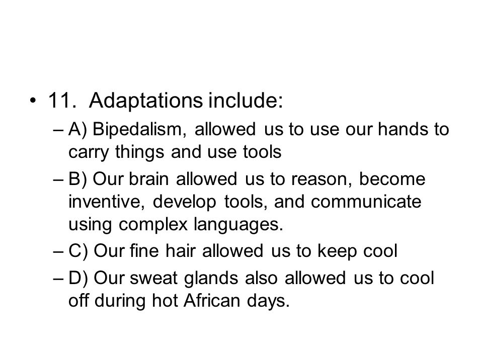 11. Adaptations include: –A) Bipedalism, allowed us to use our hands to carry things and use tools –B) Our brain allowed us to reason, become inventiv