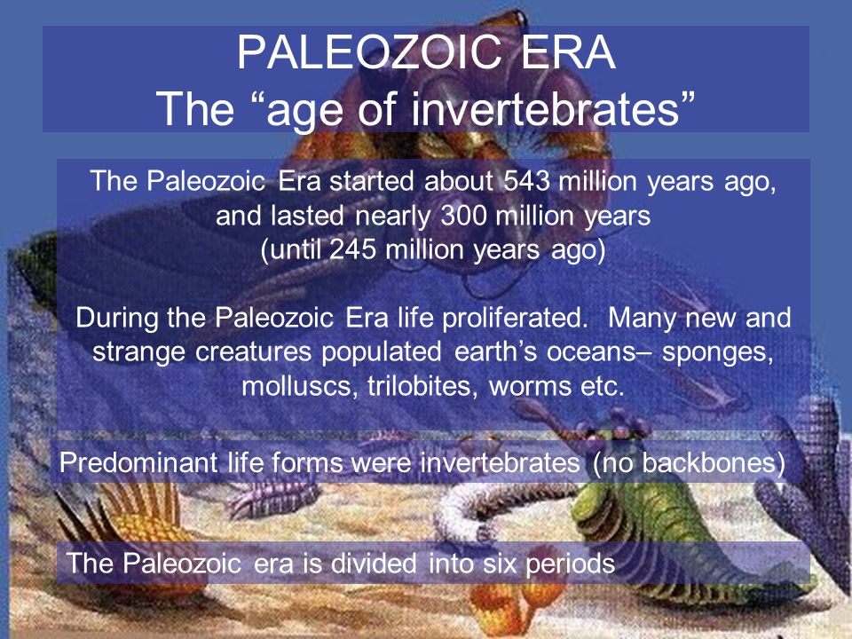 The Paleozoic Era started about 543 million years ago, and lasted nearly 300 million years (until 245 million years ago) During the Paleozoic Era life