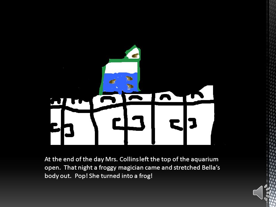 At the end of the day Mrs.Collins left the top of the aquarium open.