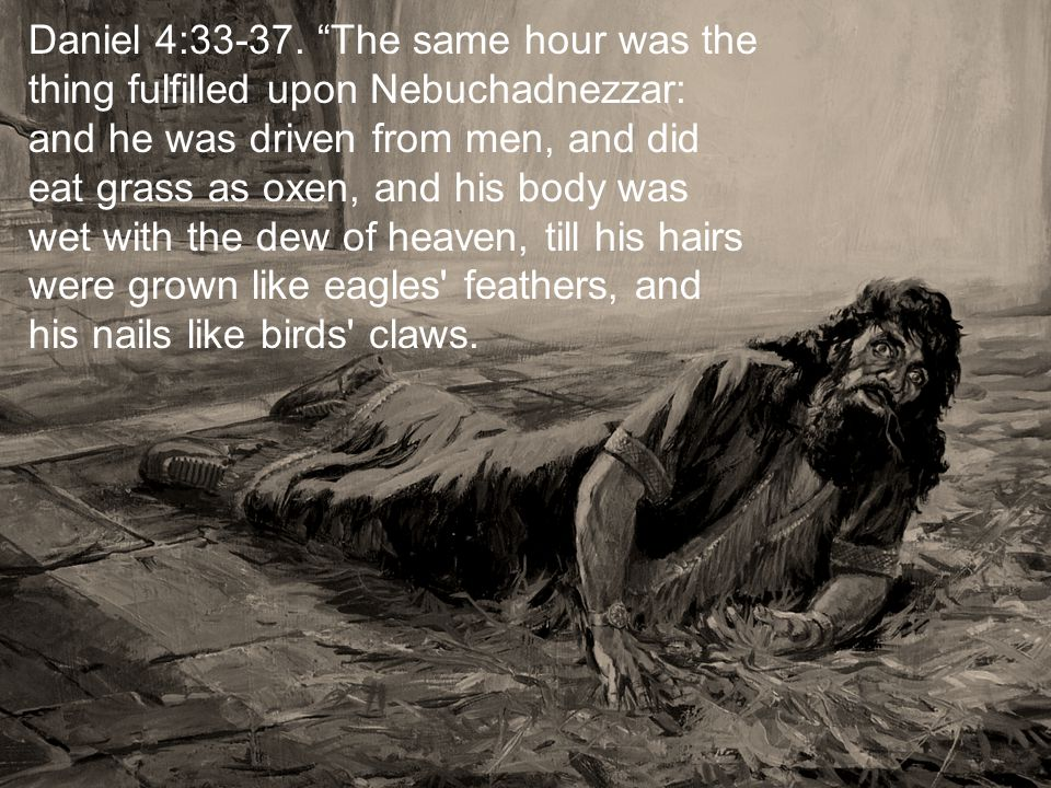 Daniel 4:33-37. The same hour was the thing fulfilled upon Nebuchadnezzar: and he was driven from men, and did eat grass as oxen, and his body was wet
