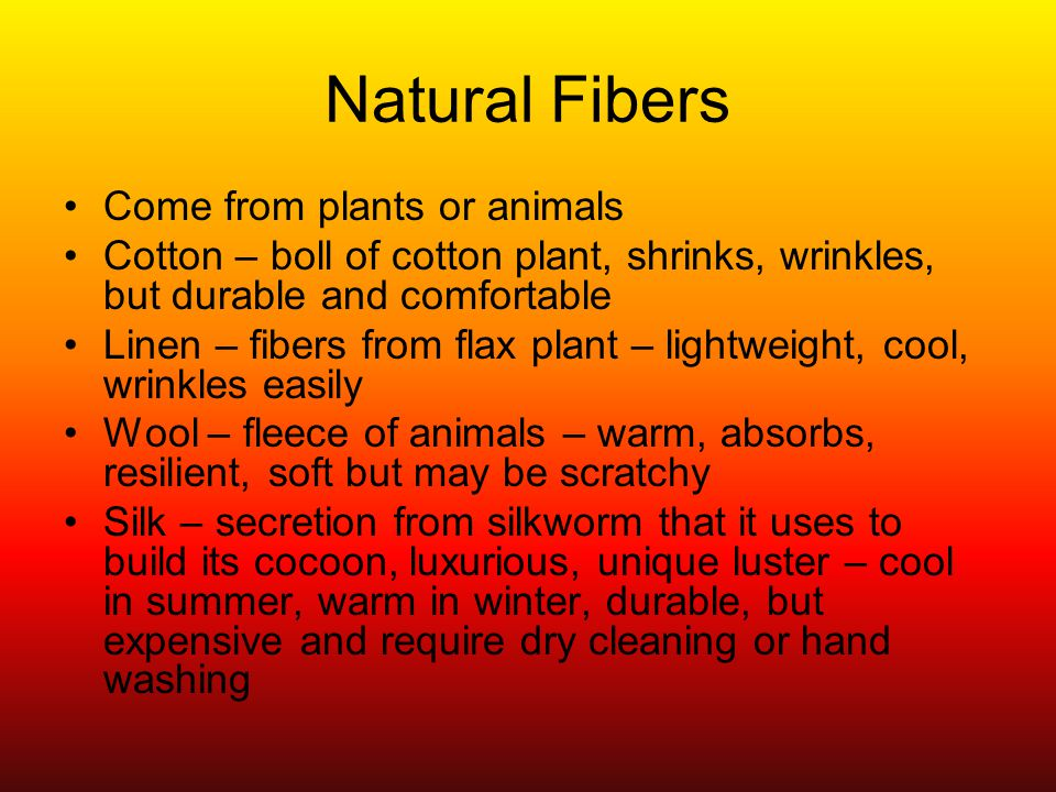 Natural Fibers Come from plants or animals Cotton – boll of cotton plant, shrinks, wrinkles, but durable and comfortable Linen – fibers from flax plant – lightweight, cool, wrinkles easily Wool – fleece of animals – warm, absorbs, resilient, soft but may be scratchy Silk – secretion from silkworm that it uses to build its cocoon, luxurious, unique luster – cool in summer, warm in winter, durable, but expensive and require dry cleaning or hand washing