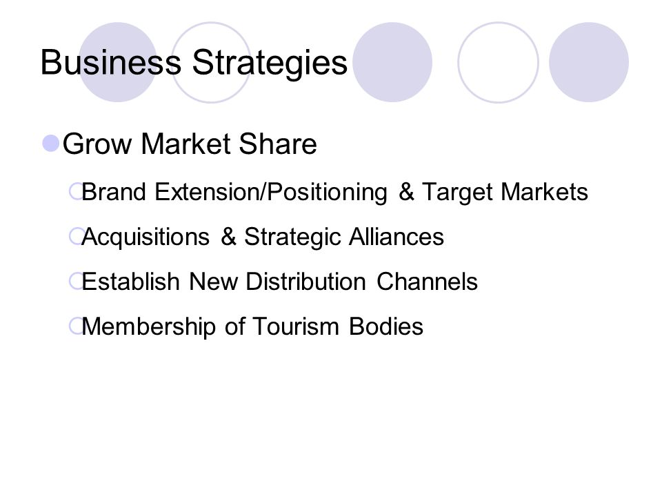 Business Strategies Grow Market Share Brand Extension/Positioning & Target Markets Acquisitions & Strategic Alliances Establish New Distribution Channels Membership of Tourism Bodies