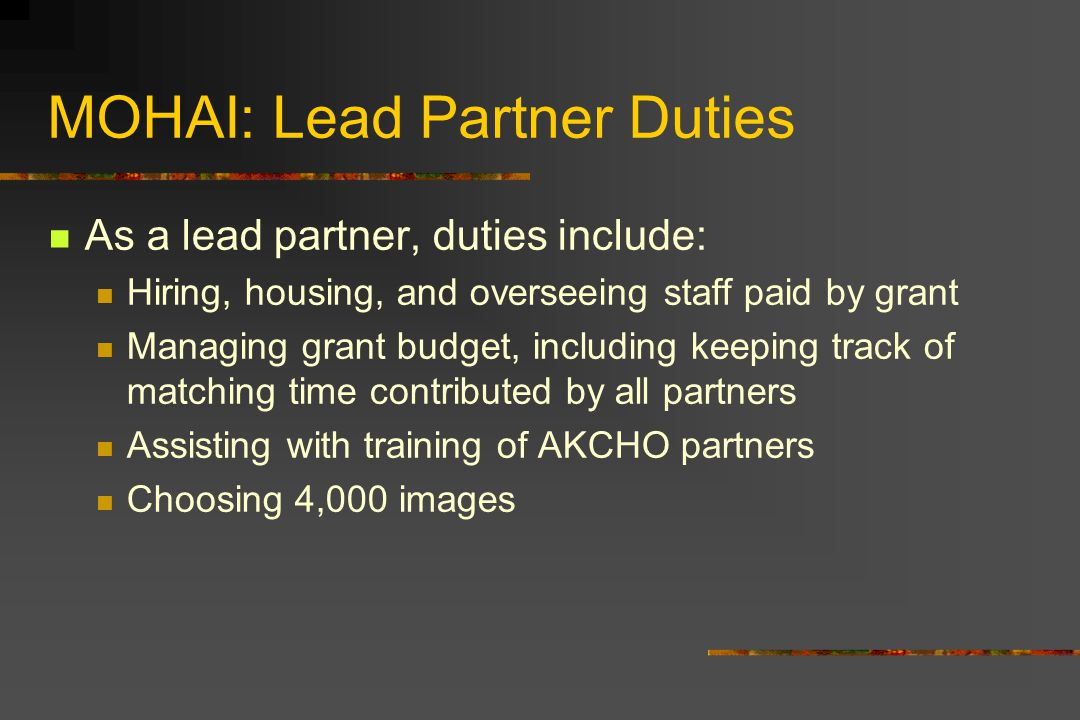 MOHAI: Lead Partner Duties As a lead partner, duties include: Hiring, housing, and overseeing staff paid by grant Managing grant budget, including keeping track of matching time contributed by all partners Assisting with training of AKCHO partners Choosing 4,000 images