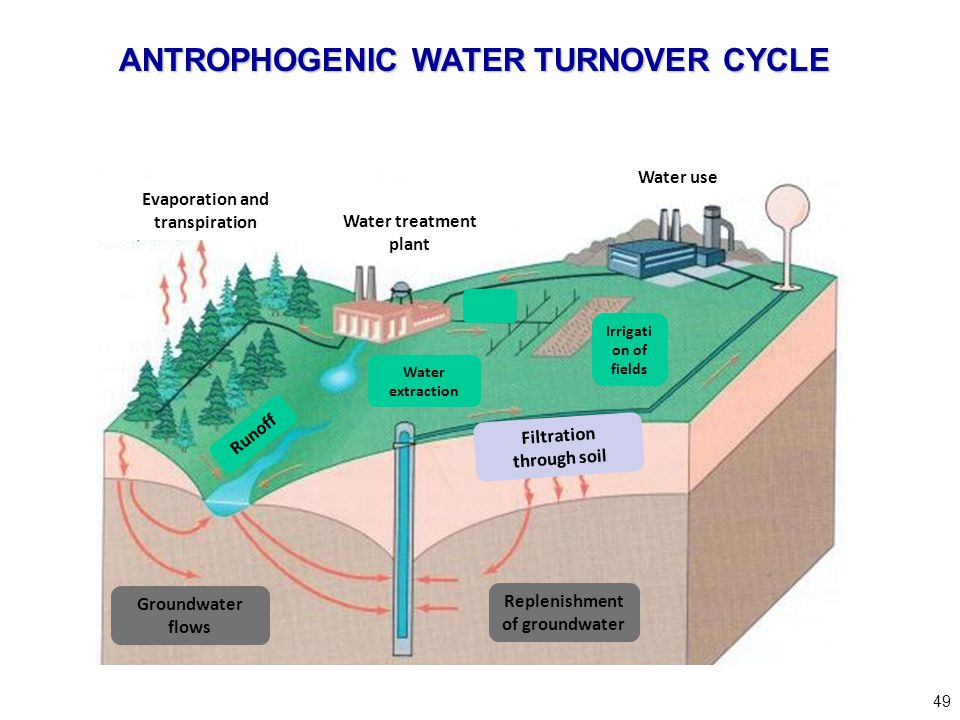 49 Groundwater flows Replenishment of groundwater Filtration through soil Evaporation and transpiration Water treatment plant Water use Runoff Water e