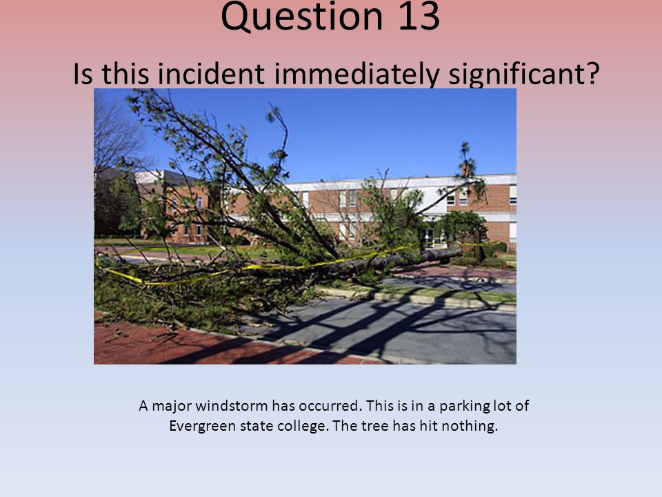 Question 13 Is this incident immediately significant? A major windstorm has occurred. This is in a parking lot of Evergreen state college. The tree ha