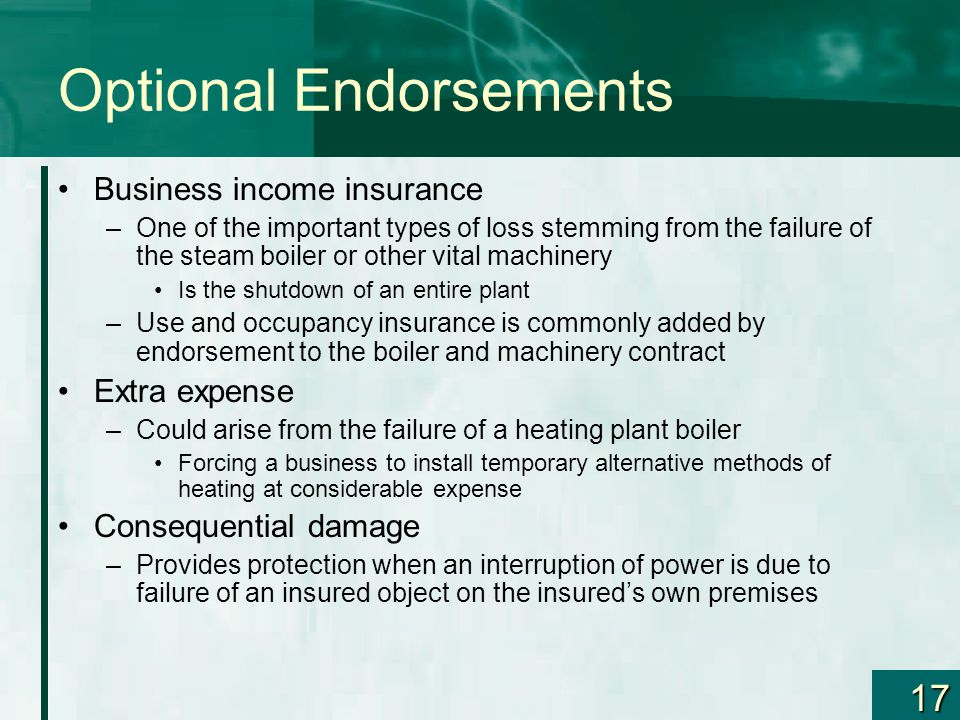 17 Optional Endorsements Business income insurance –One of the important types of loss stemming from the failure of the steam boiler or other vital ma
