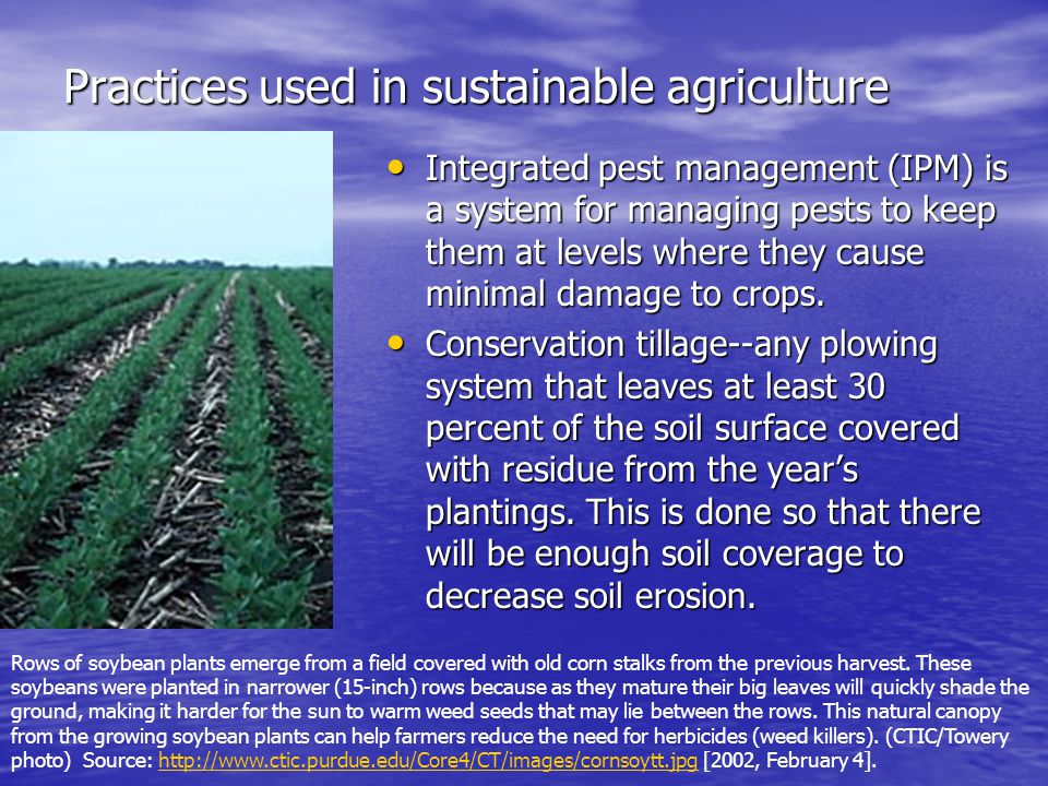 Practices used in sustainable agriculture Integrated pest management (IPM) is a system for managing pests to keep them at levels where they cause minimal damage to crops.