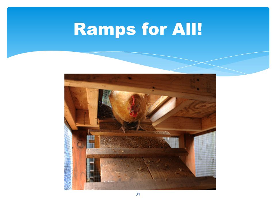 31 Ramps for All!