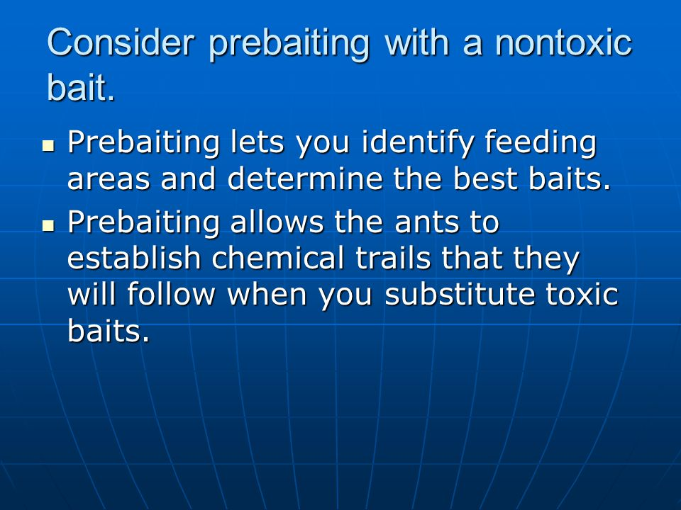 Consider prebaiting with a nontoxic bait. Prebaiting lets you identify feeding areas and determine the best baits. Prebaiting lets you identify feedin