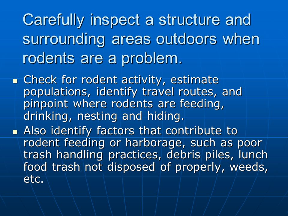 Carefully inspect a structure and surrounding areas outdoors when rodents are a problem. Check for rodent activity, estimate populations, identify tra