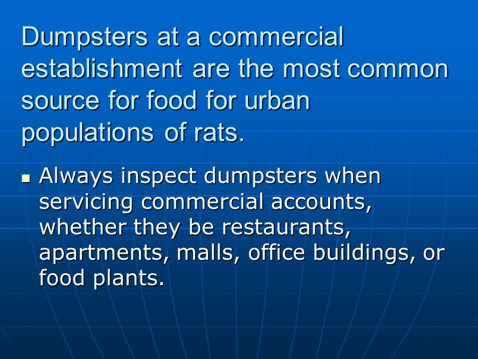 Dumpsters at a commercial establishment are the most common source for food for urban populations of rats. Always inspect dumpsters when servicing com