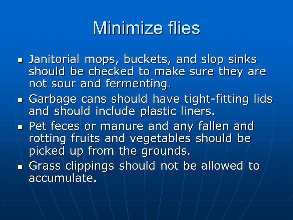 Minimize flies Janitorial mops, buckets, and slop sinks should be checked to make sure they are not sour and fermenting. Janitorial mops, buckets, and