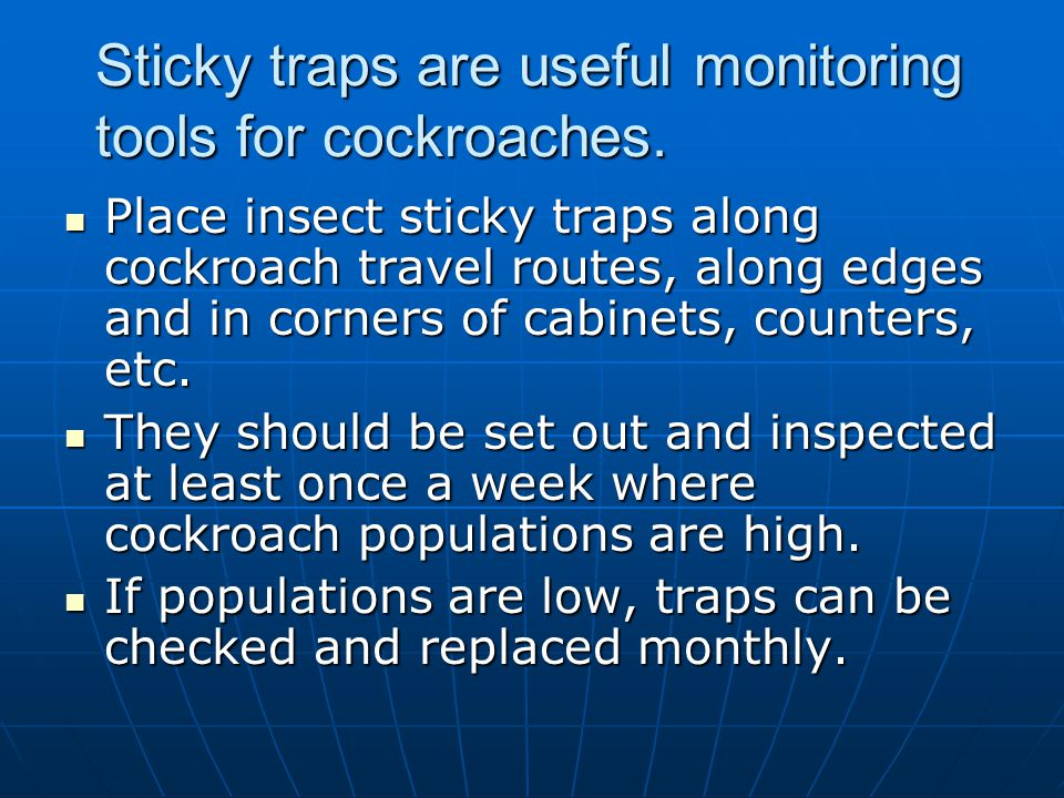 Sticky traps are useful monitoring tools for cockroaches. Place insect sticky traps along cockroach travel routes, along edges and in corners of cabin