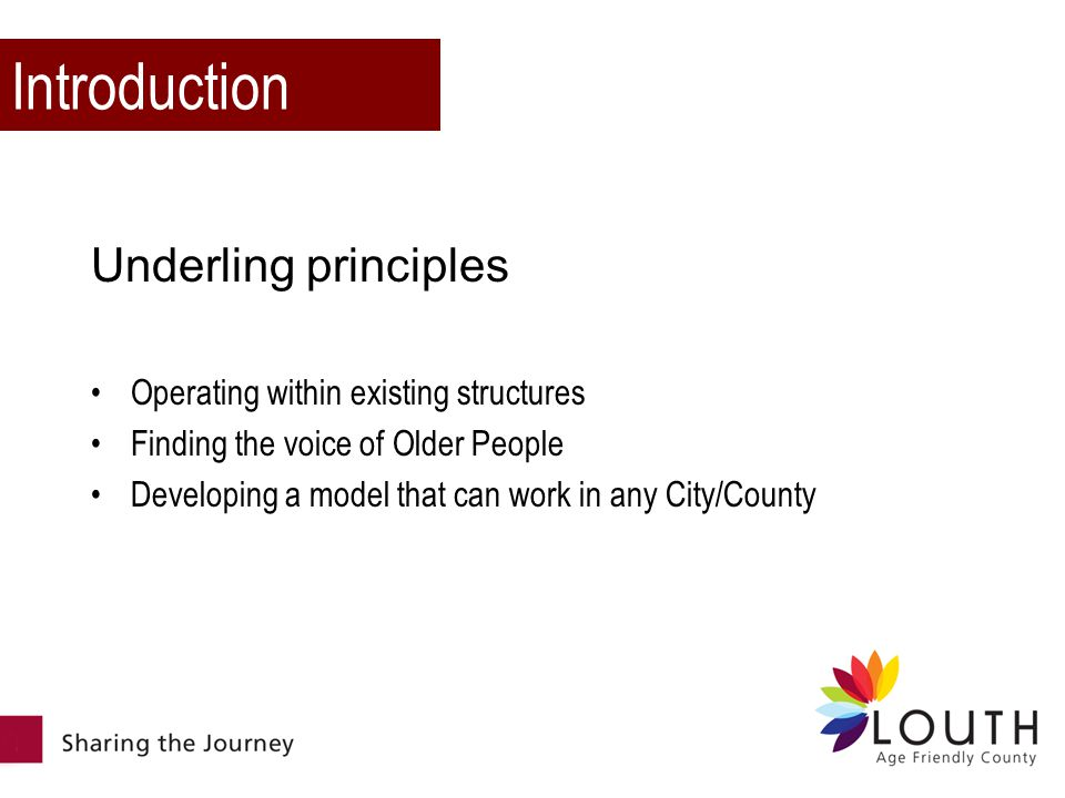 Introduction Underling principles Operating within existing structures Finding the voice of Older People Developing a model that can work in any City/County