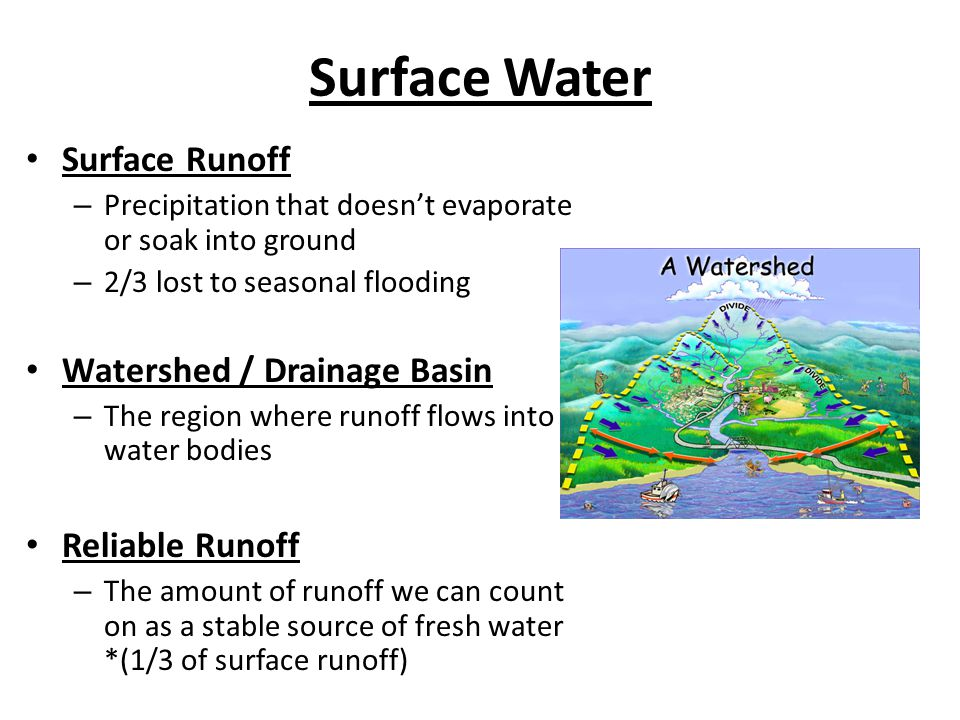 Surface Water Surface Runoff – Precipitation that doesnt evaporate or soak into ground – 2/3 lost to seasonal flooding Watershed / Drainage Basin – Th