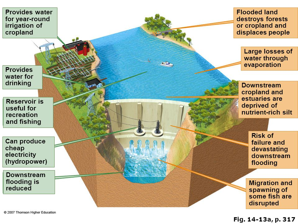 Fig. 14-13a, p. 317 Provides water for year-round irrigation of cropland Flooded land destroys forests or cropland and displaces people Large losses o