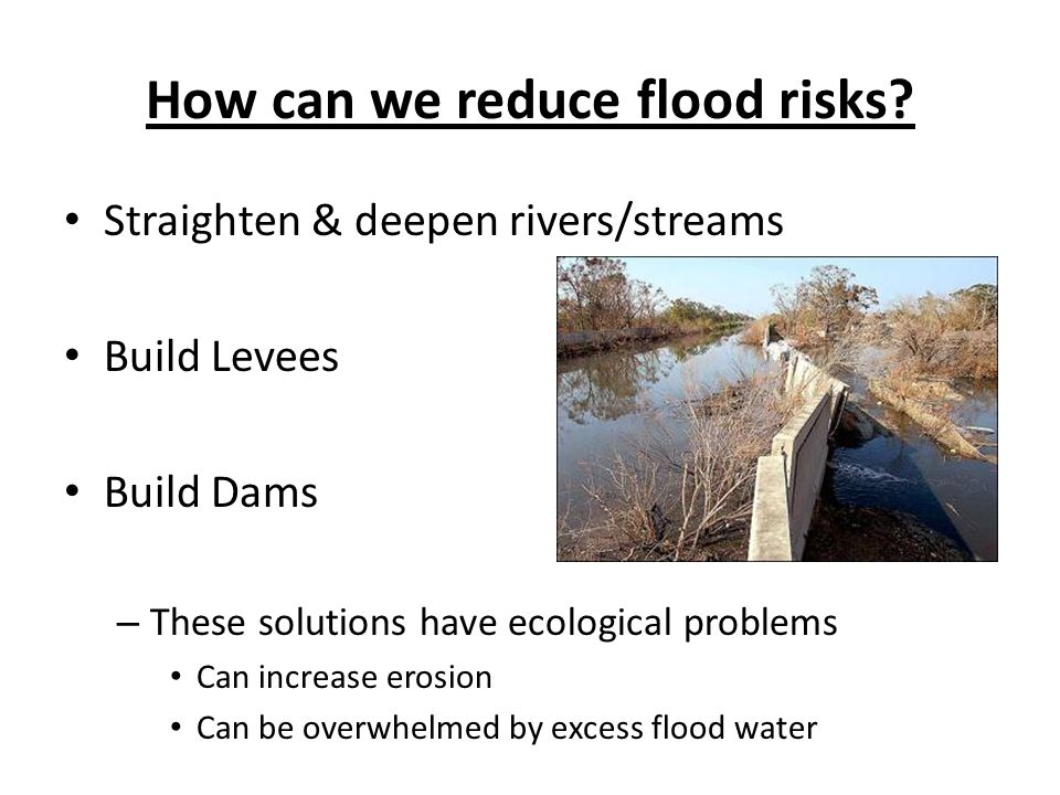 How can we reduce flood risks? Straighten & deepen rivers/streams Build Levees Build Dams – These solutions have ecological problems Can increase eros