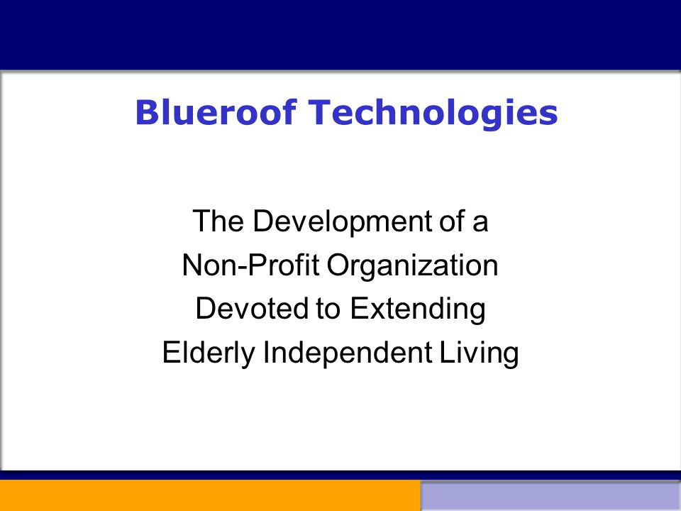 Blueroof Technologies The Development of a Non-Profit Organization Devoted to Extending Elderly Independent Living