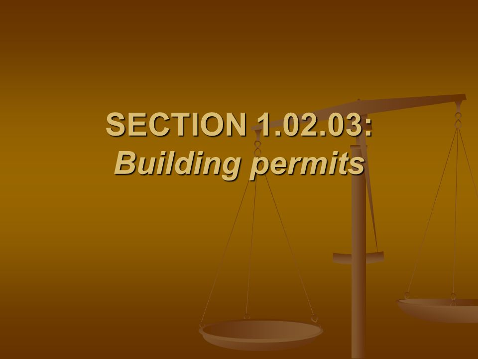 SECTION 1.02.03: Building permits