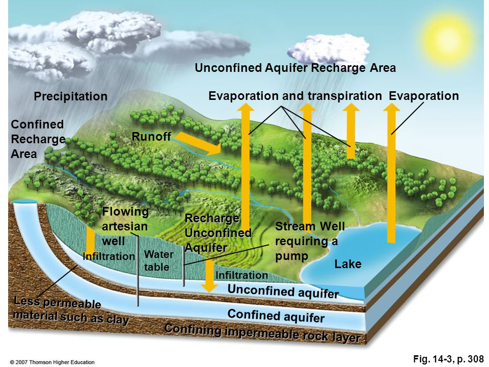 Fig. 14-3, p. 308 Unconfined Aquifer Recharge Area Precipitation Evaporation and transpirationEvaporation Confined Recharge Area Runoff Flowing artesi