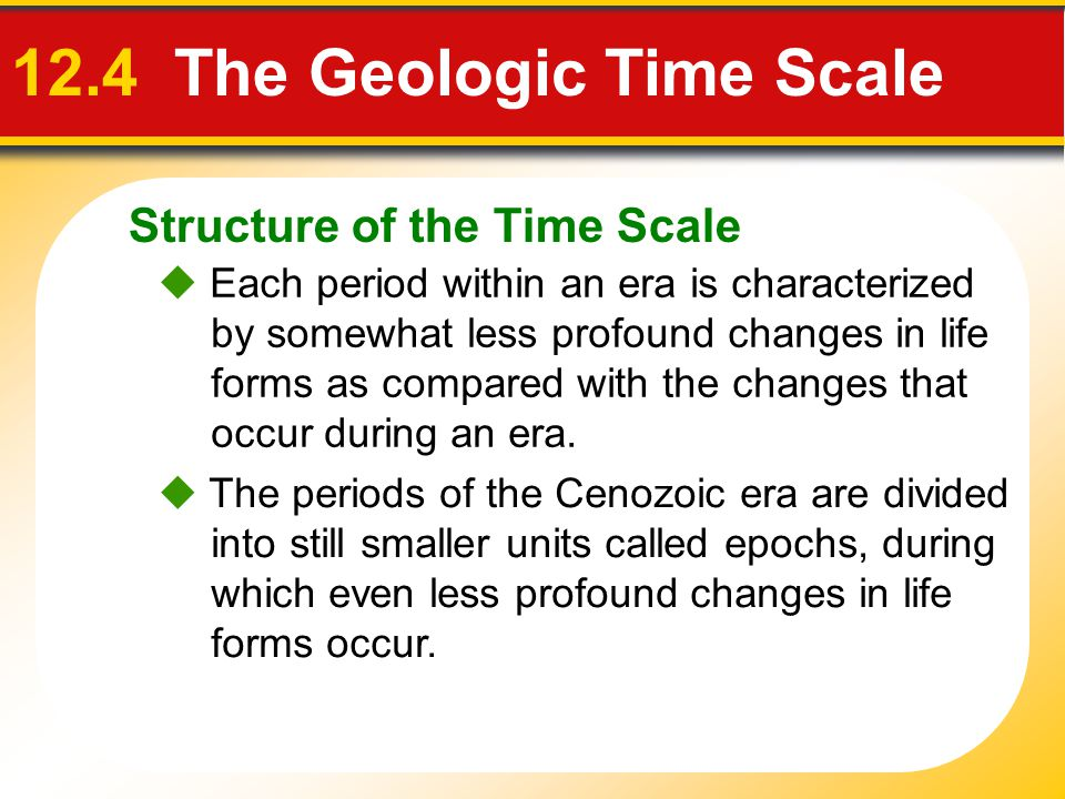 Structure of the Time Scale 12.4 The Geologic Time Scale Each period within an era is characterized by somewhat less profound changes in life forms as