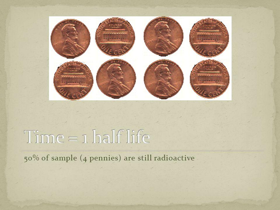 50% of sample (4 pennies) are still radioactive